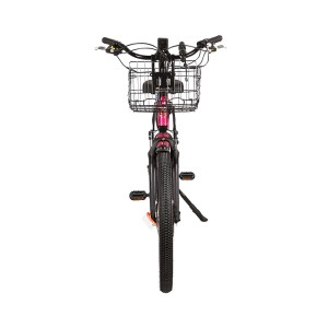X-Treme Catalina 48v Step-Through Electric Beach Cruiser front