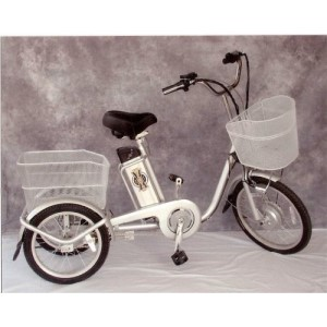 Electraped Wentz Lithium Ion Electric Trike (Tricycle/Bicycle)