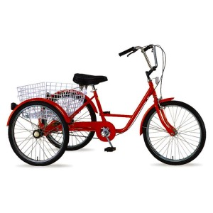 "Belize Tri Rider 24"" Single Speed Coaster Adult Tricycle"