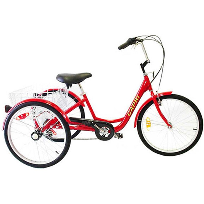 Belize Tri Rider 6-Speed 24 Inch Adult Tricycle