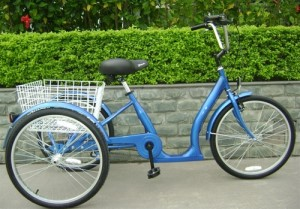 True Bicycles Low Step Single Speed Adult Tricycle