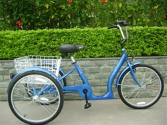 True Bicycles Low Step 3 Speed Adult Tricycle