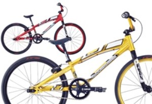 Intense Factory Junior 2011 BMX Bike