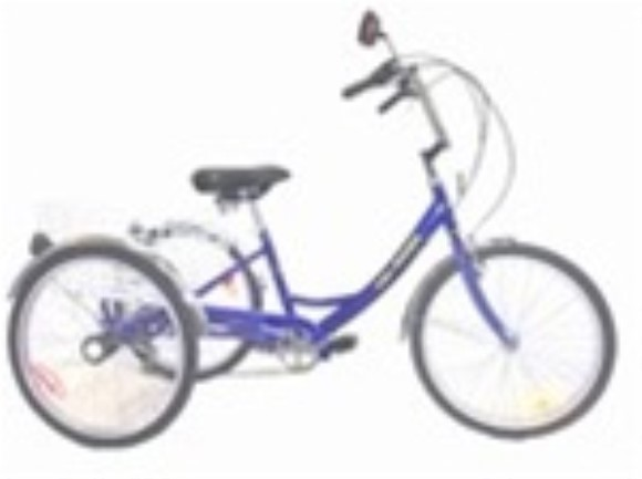 Belize Tri Rider 24 Inch Single Speed Adult Tricycle