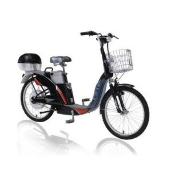 IZIP Hg-1000 Electric Bike