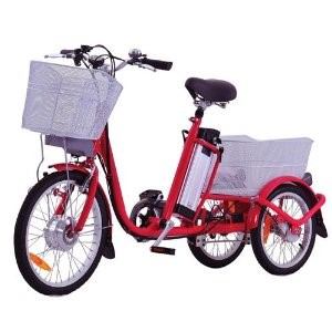 Rad2Go Electric Bicycle TEB 01