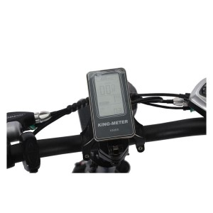 X-Treme E-Rider King Meter pedal assist PAS