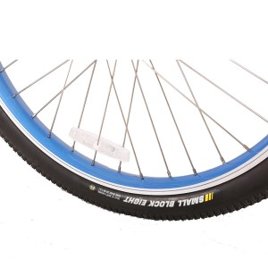Kenda bike tire on X-Treme Catalina