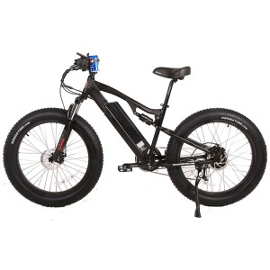 Fat Tire Electric Mountain Bike, the X-Treme Rocky Road