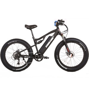 48v Fat Tire Electric Mountain Bike, the Rocky Road from X-Treme