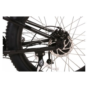 X-Treme Rocky Road rear Tektro disk brake