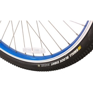 Kenda beach cruiser tire on X-Treme Laguna
