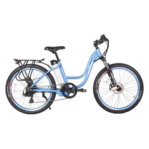 X-Treme Trail Climber Elite 24v eBike