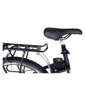 X-Treme Trail Climber seat and rack