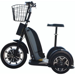 MotoTec Electric Trike 48v 800w for adults