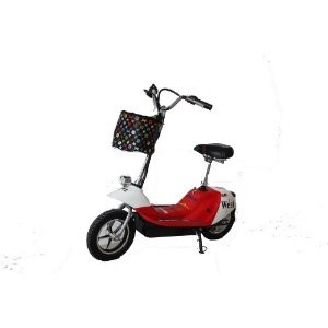 Rad2Go Dolphin Electric Scooter