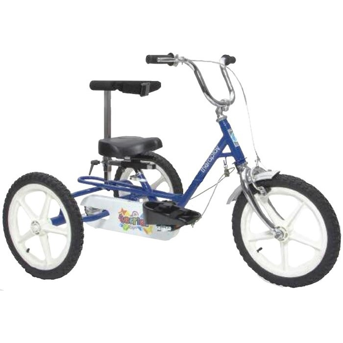 Triaid Terrier Special Needs Tricycle