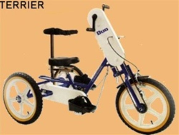 Triaid Duo Special Needs Tricycle