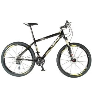 Head Access Mountain Bike