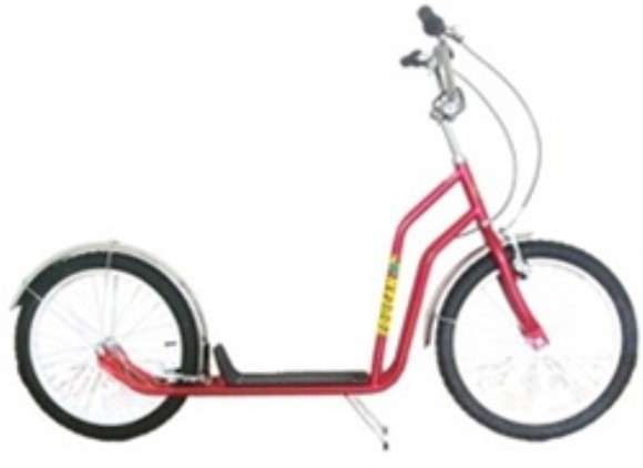 "Toucan 20"" Kick Bike Scooter"