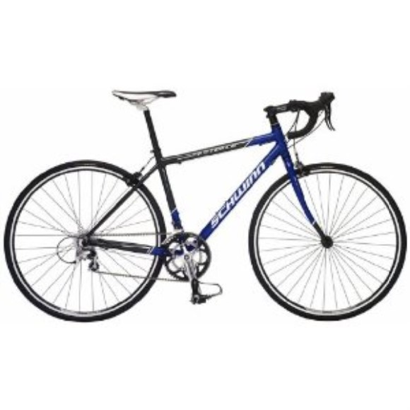 Schwinn Fastback Road Bike (700c Wheels, Medium)